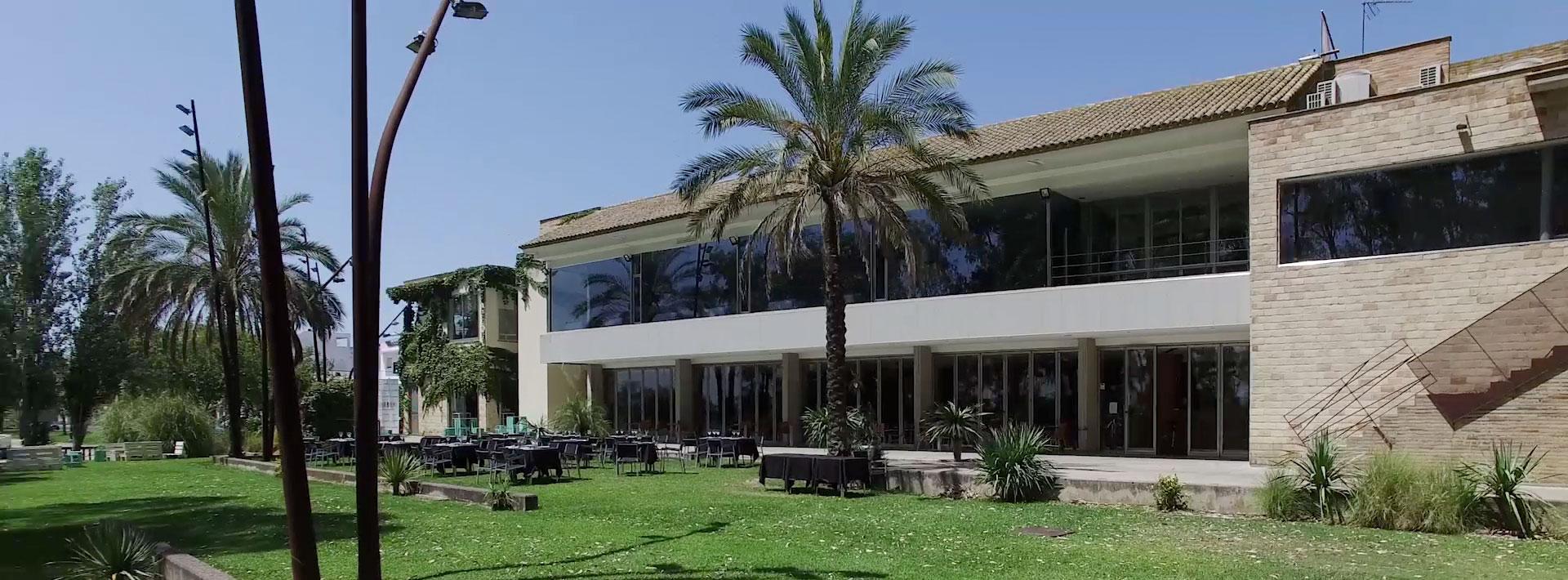 Cavia en Sevilla