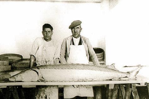 Pesca de esturión Coria del Río